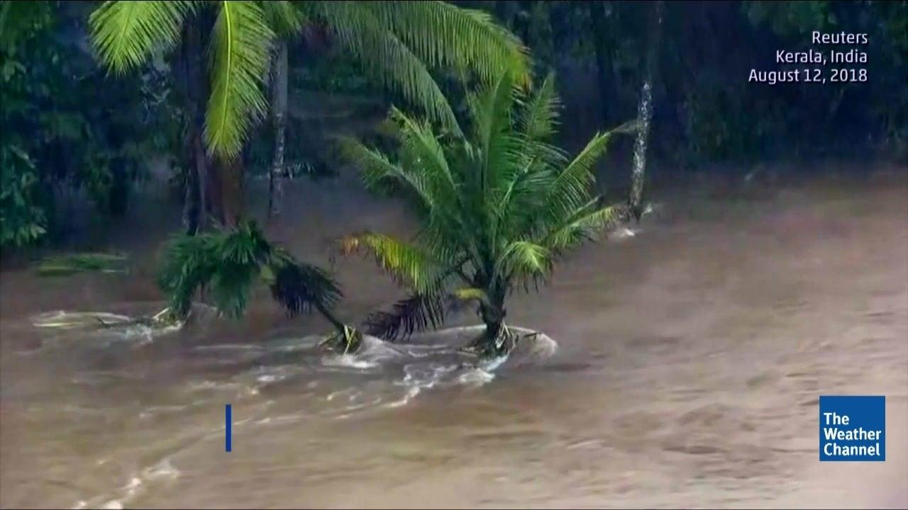 Kerala Reels Under 'Worst Flood of Century'