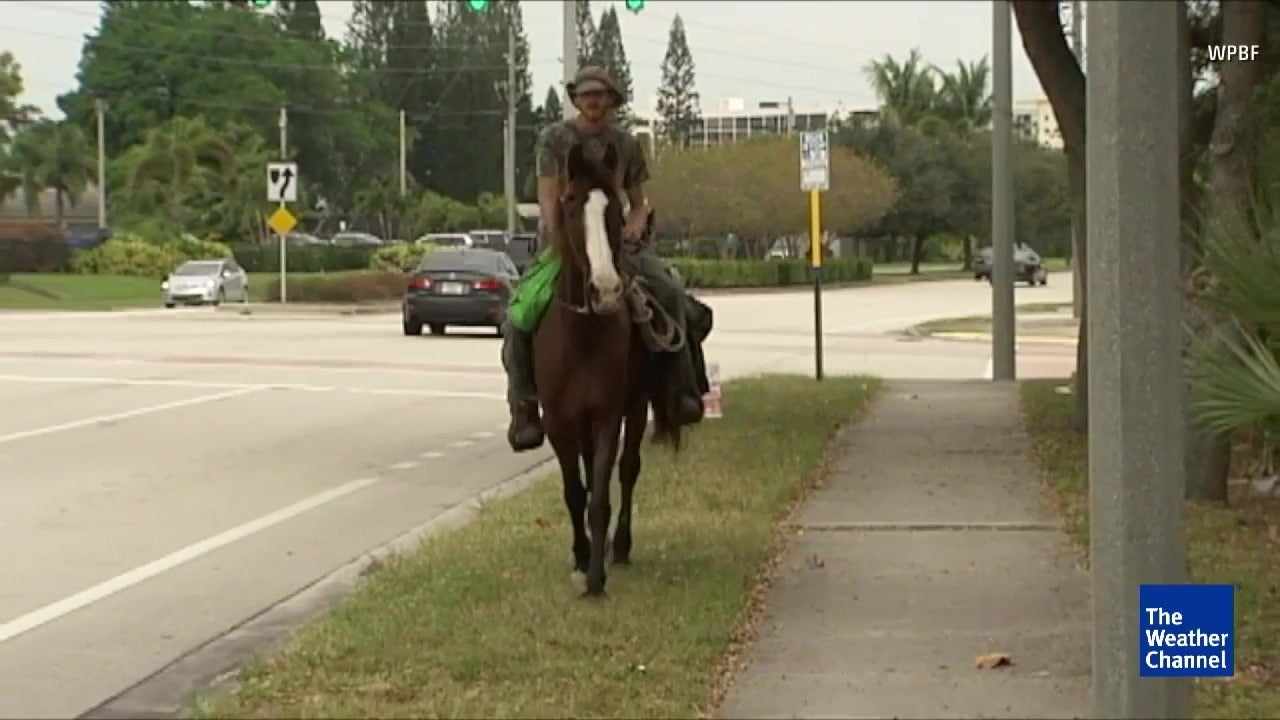 man rides his horse from south carolina to key west  fl