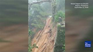Typhoon Mangkhut Topples Treasured Tree in Philippines