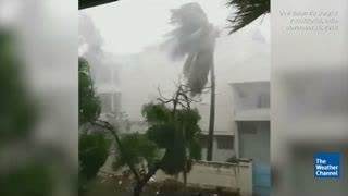 Tropical Cyclone Gaja Turns Deadly as it Makes Landfall in India