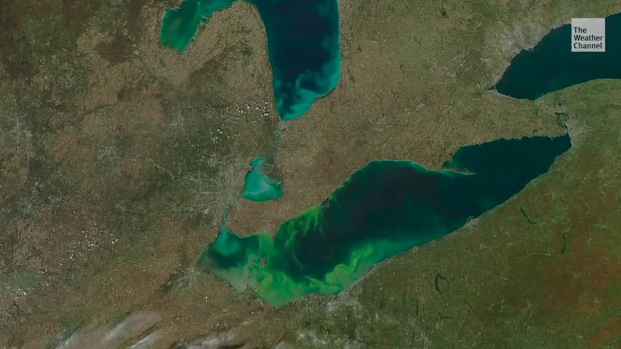 Toxic Algae Could Plague Lake Erie this Summer