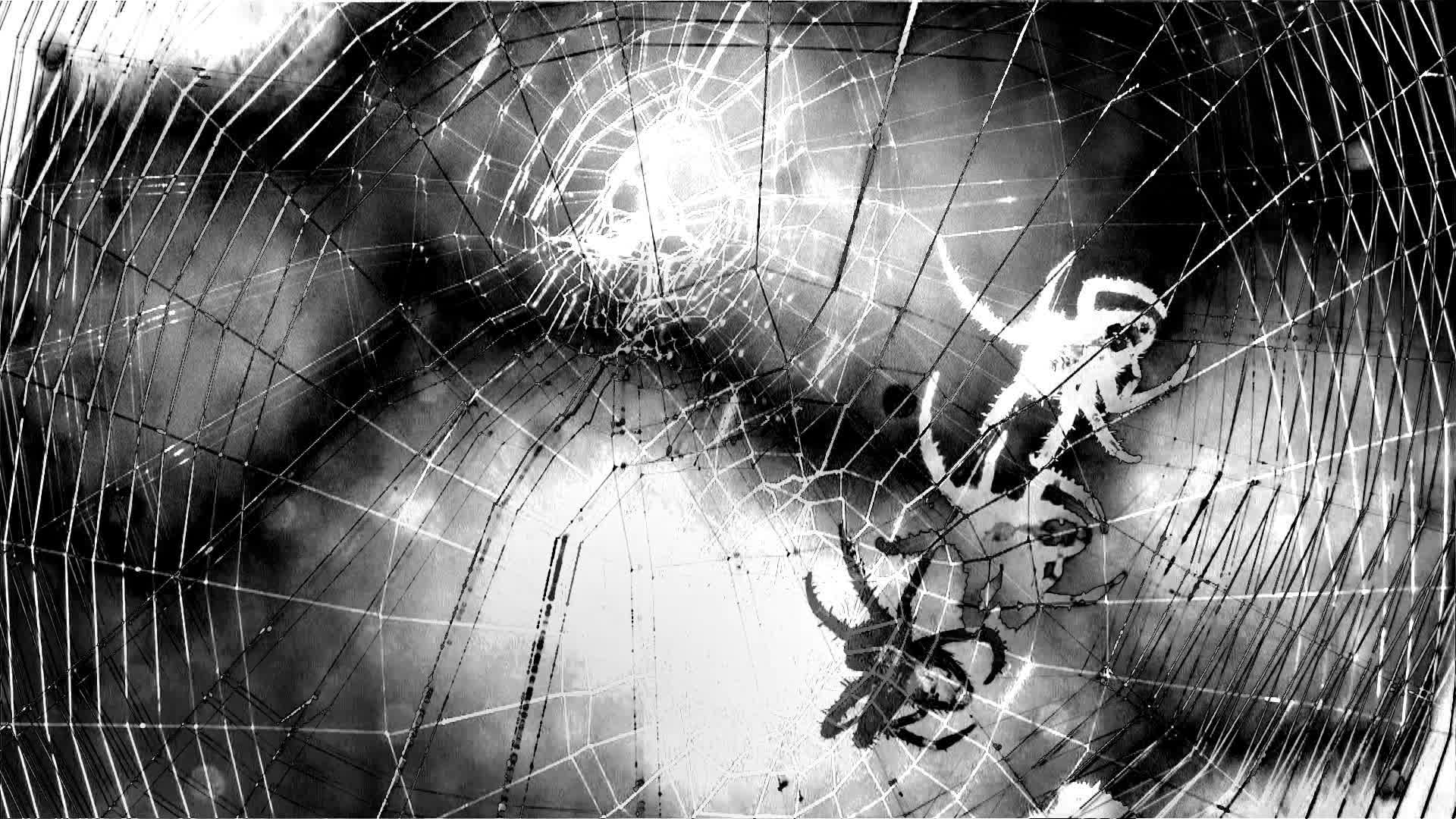 These spiders may soon abandon group life and become loners.