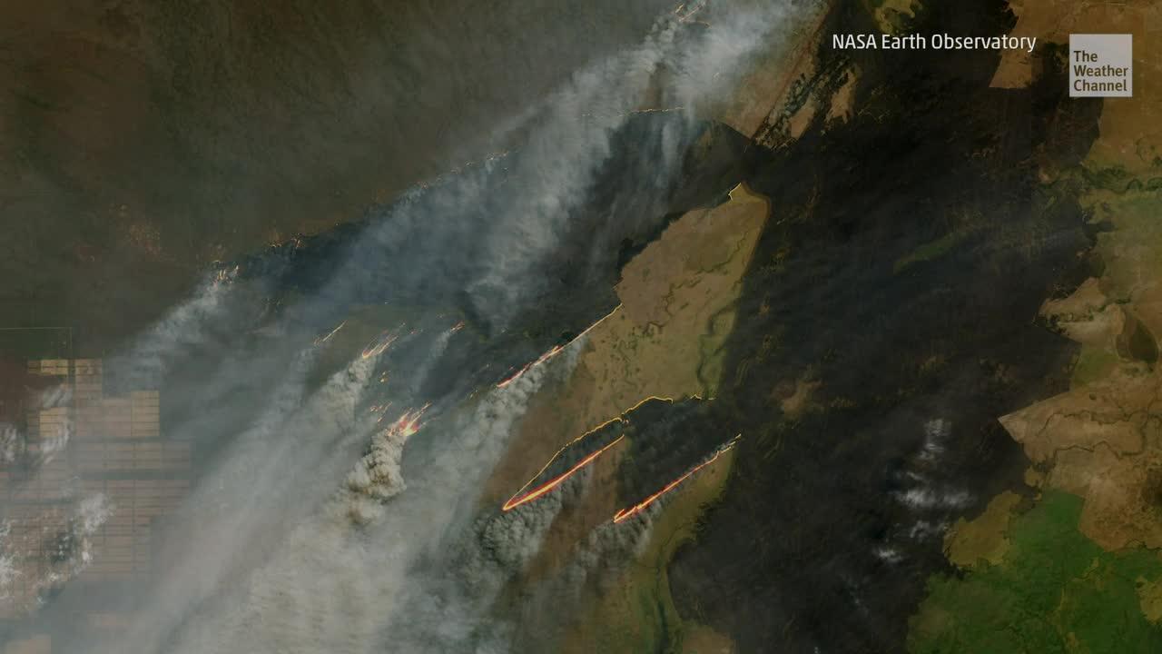 El fuego avivado por el viento desde el norte se propagó desde Bolivia hacia el Chaco, en el norte de Paraguay. El gobierno estima que las llamas han arrasado unas 100,000 hectáreas de vegetación.