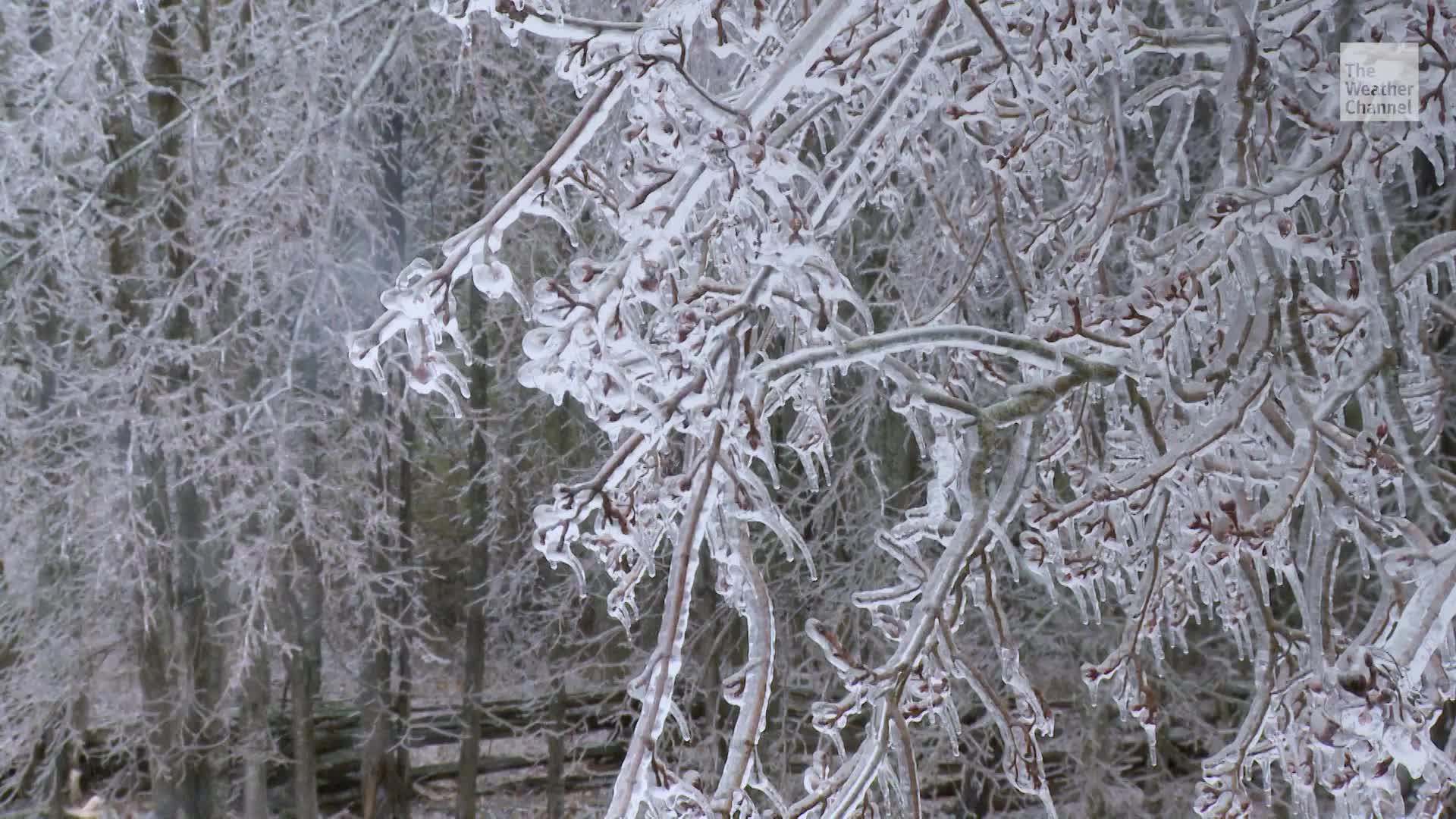 How to Stay Safe During an Ice Storm