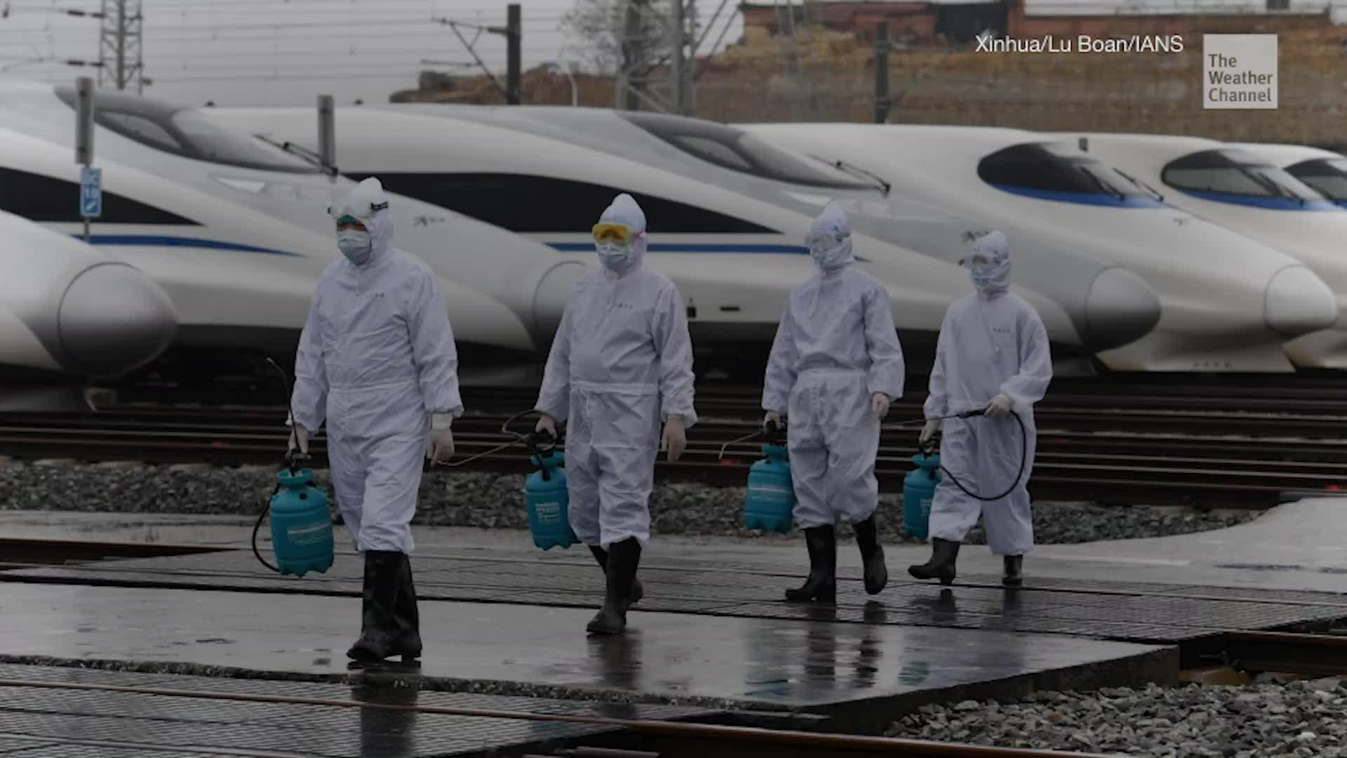 A Short History of Recent Pandemics