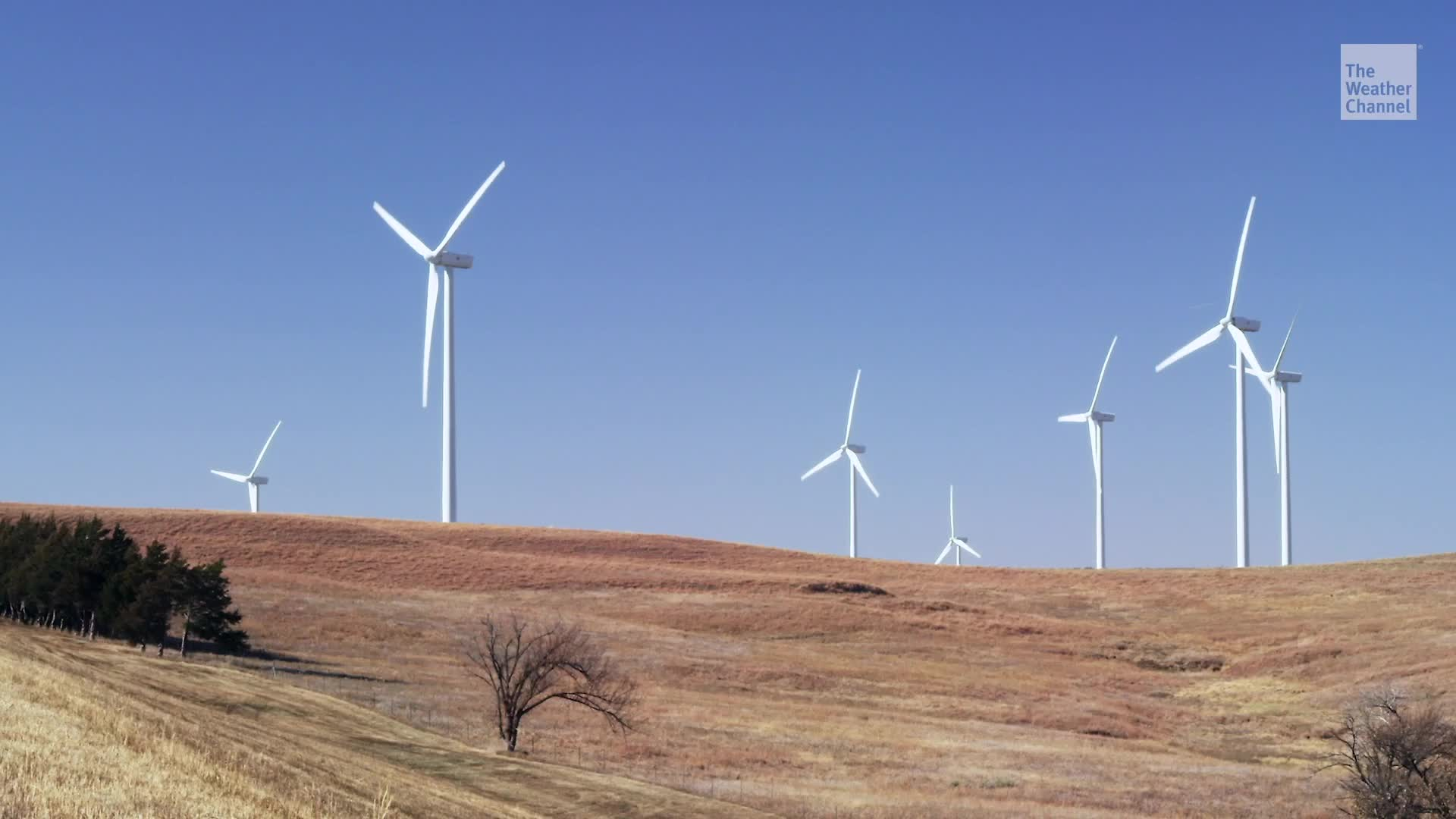 Las ambiciosas metas de Colorado para obtener energía limpia han resultado en el cierre de varias plantas eléctricas de carbón, una gran noticia para el suministro de agua en el estado a menudo con sequía.