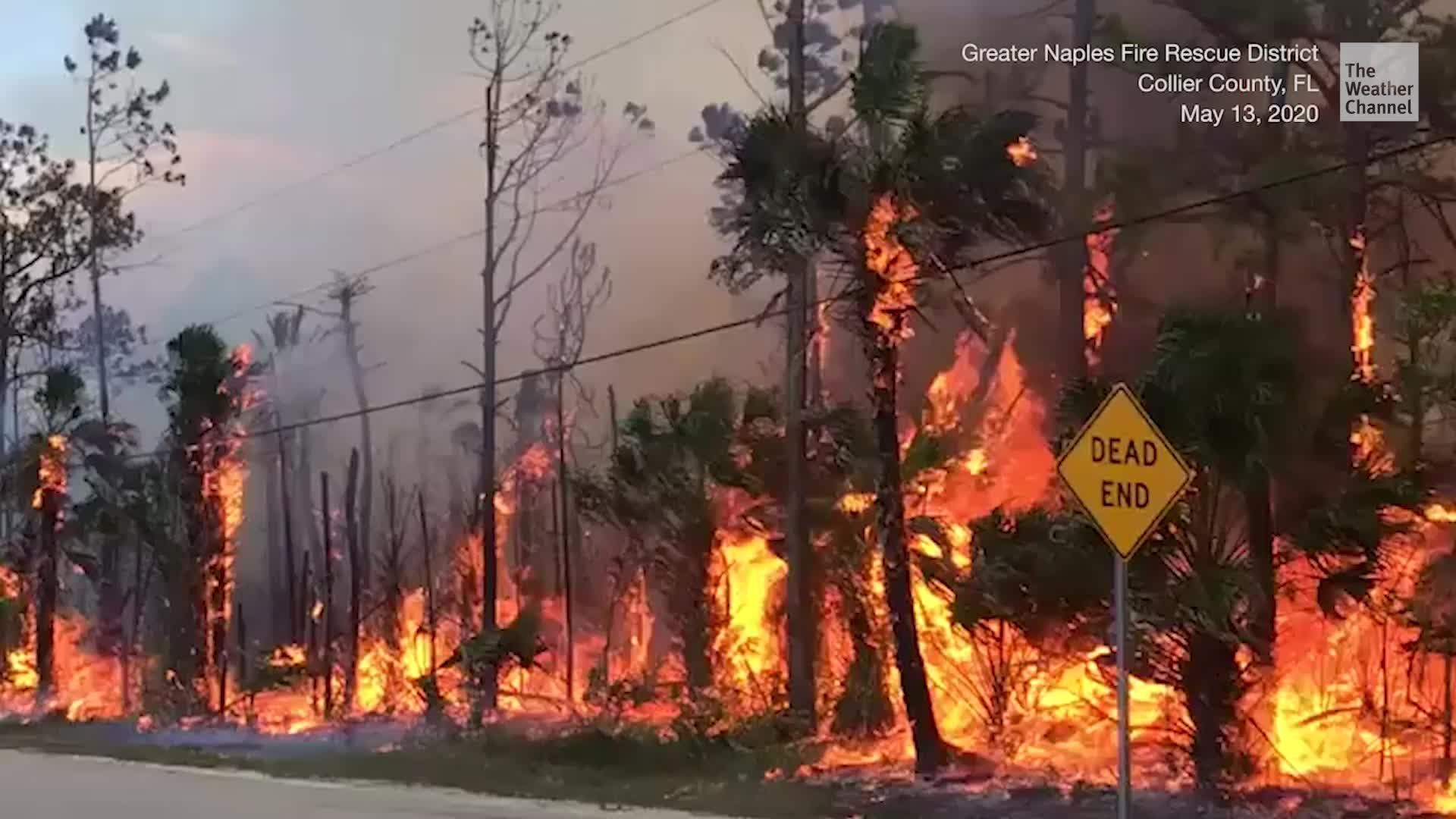 Evacuaciones por incendios forestales en sureste de Florida