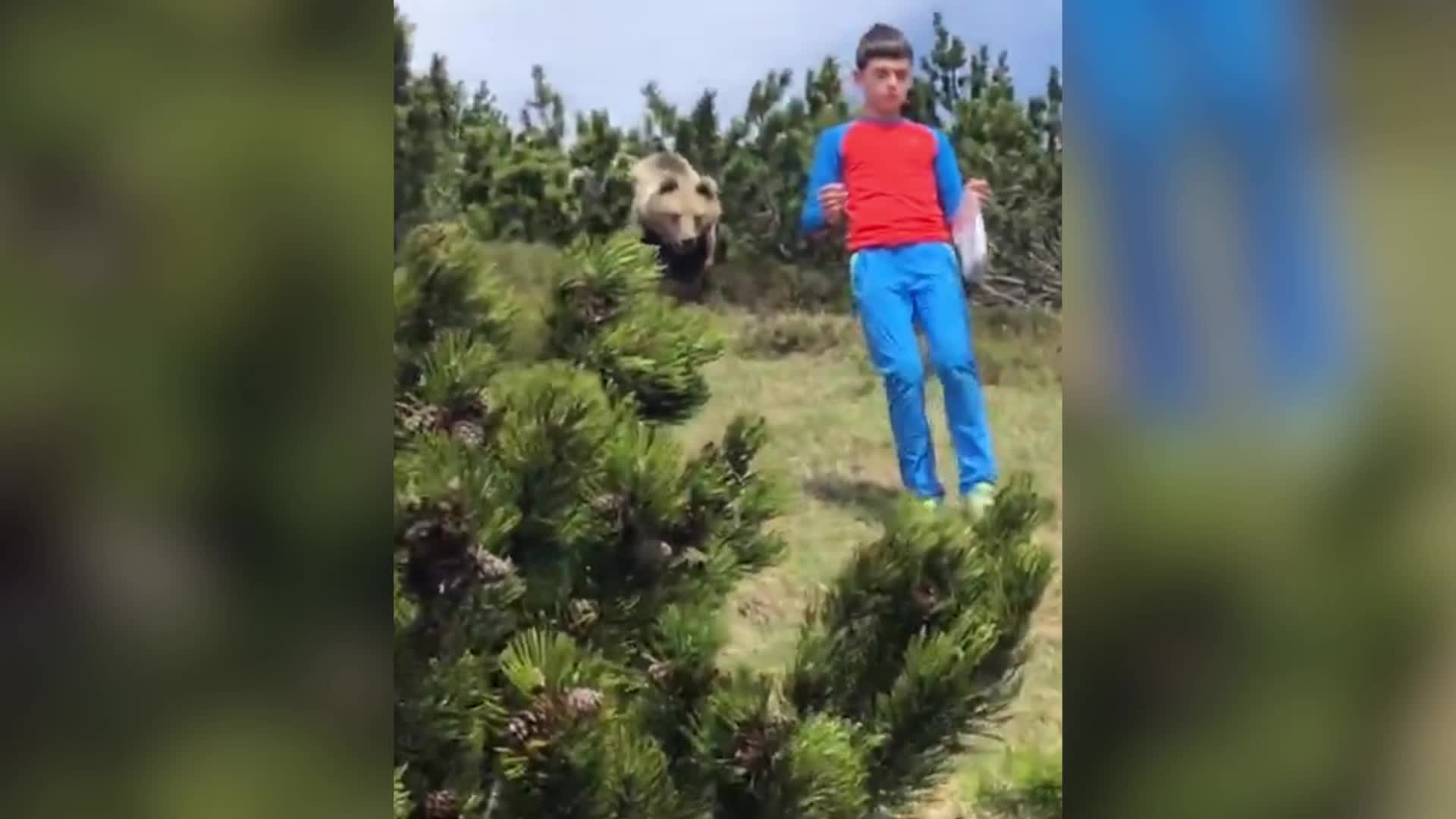 12-Year-Old Boy Keeps Calm to Safely Escape Bear Attack