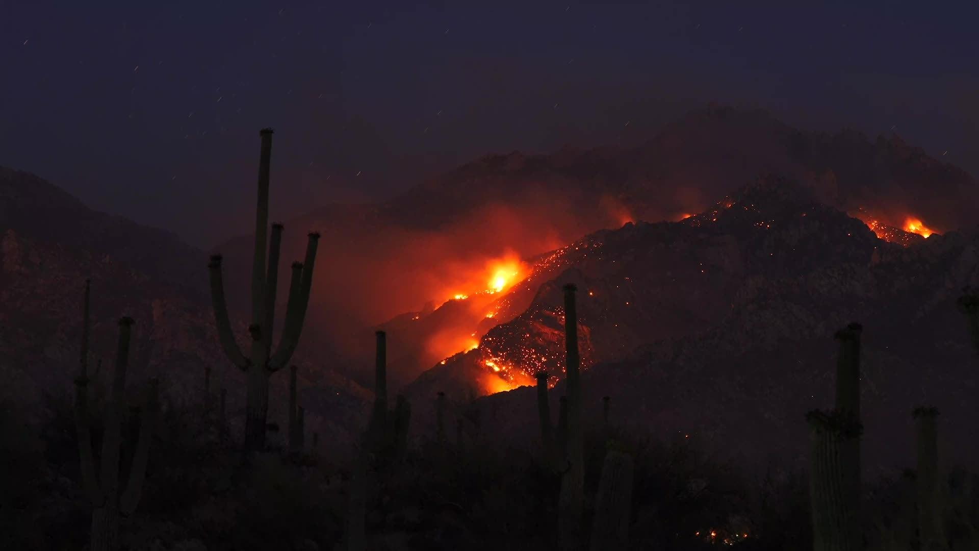 Incendios forestales en las montañas de Arizona
