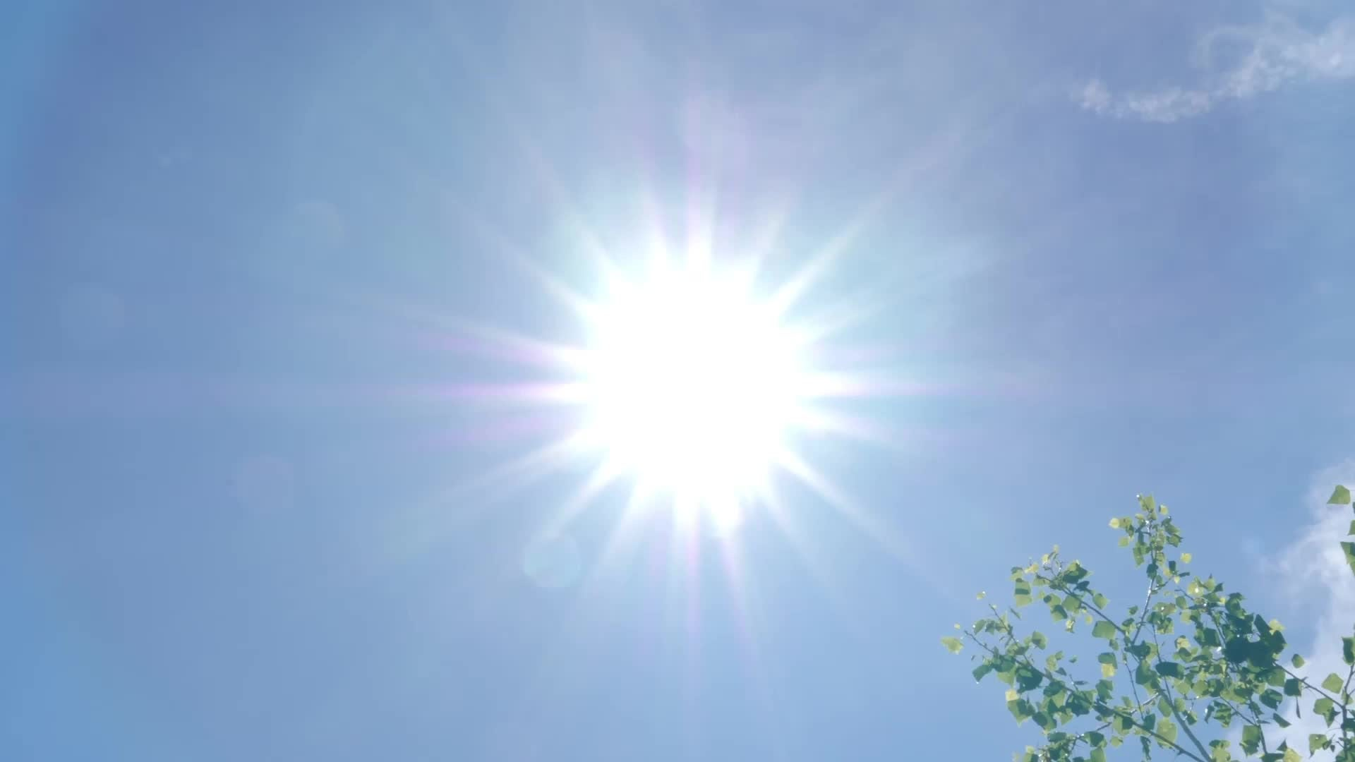 4 Things Extreme Heat Can Do to Your Body