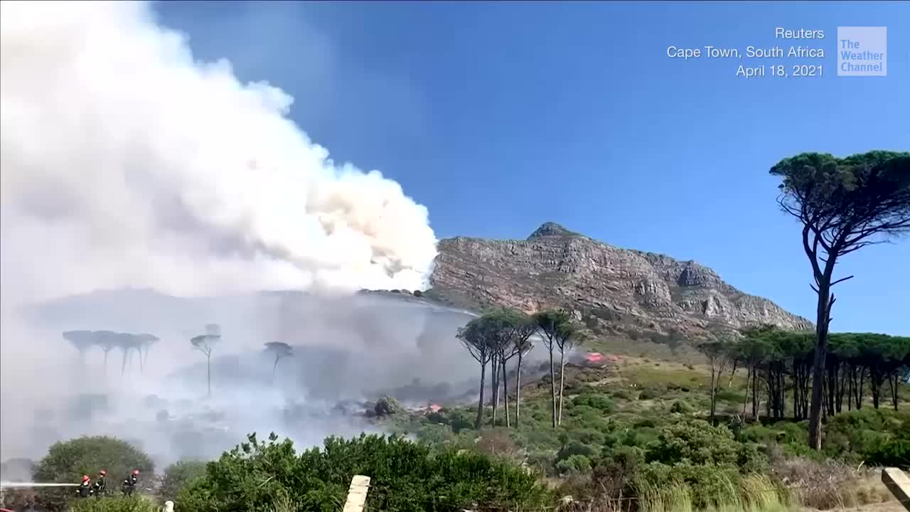 Wildfire Races Down Mountain, Burns University Buildings in Cape Town - Videos from The Weather Channel | weather.com