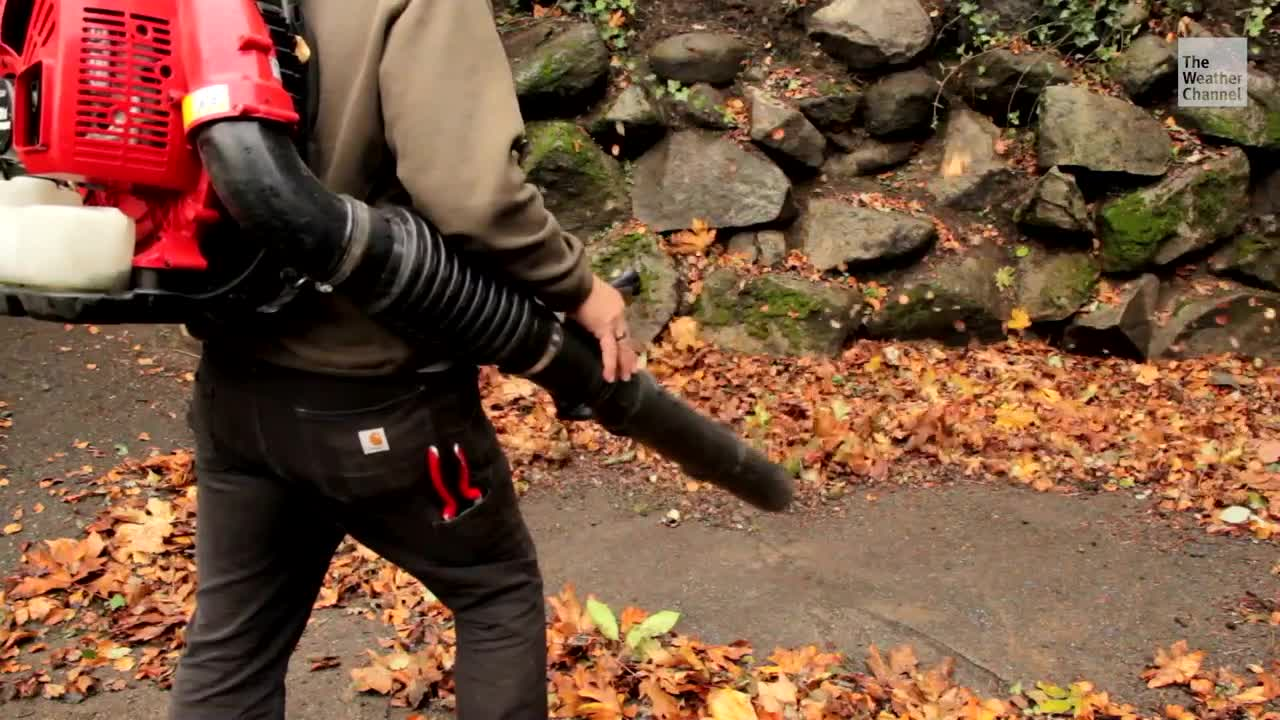 Lawmakers in California Pushing to Ban Sale of Leaf Blowers, Lawn Mowers - Videos from The Weather Channel | weather.com
