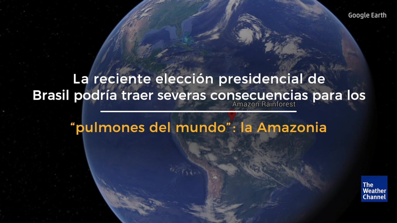 La Amazonia en riesgo tras victoria de Jair Bolsonaro
