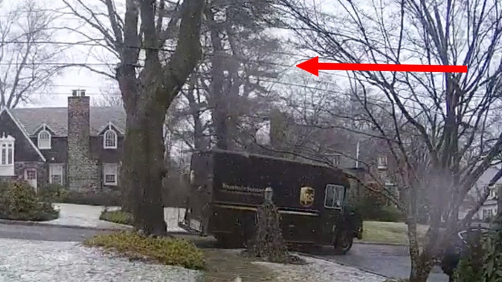 falling tree misses delivery truck in gusty winds in new