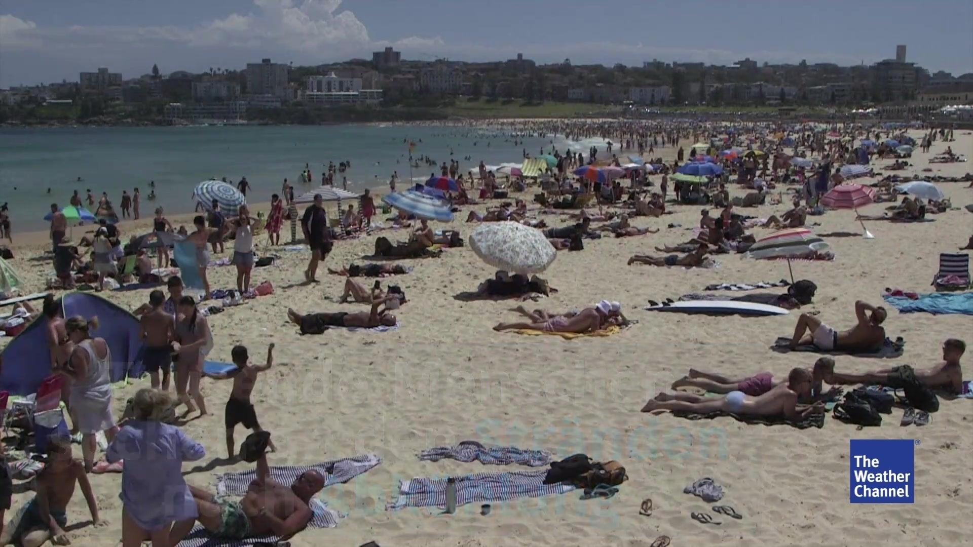 8602aa087 Solo Para Adultos En Palma De Mallorca - Home