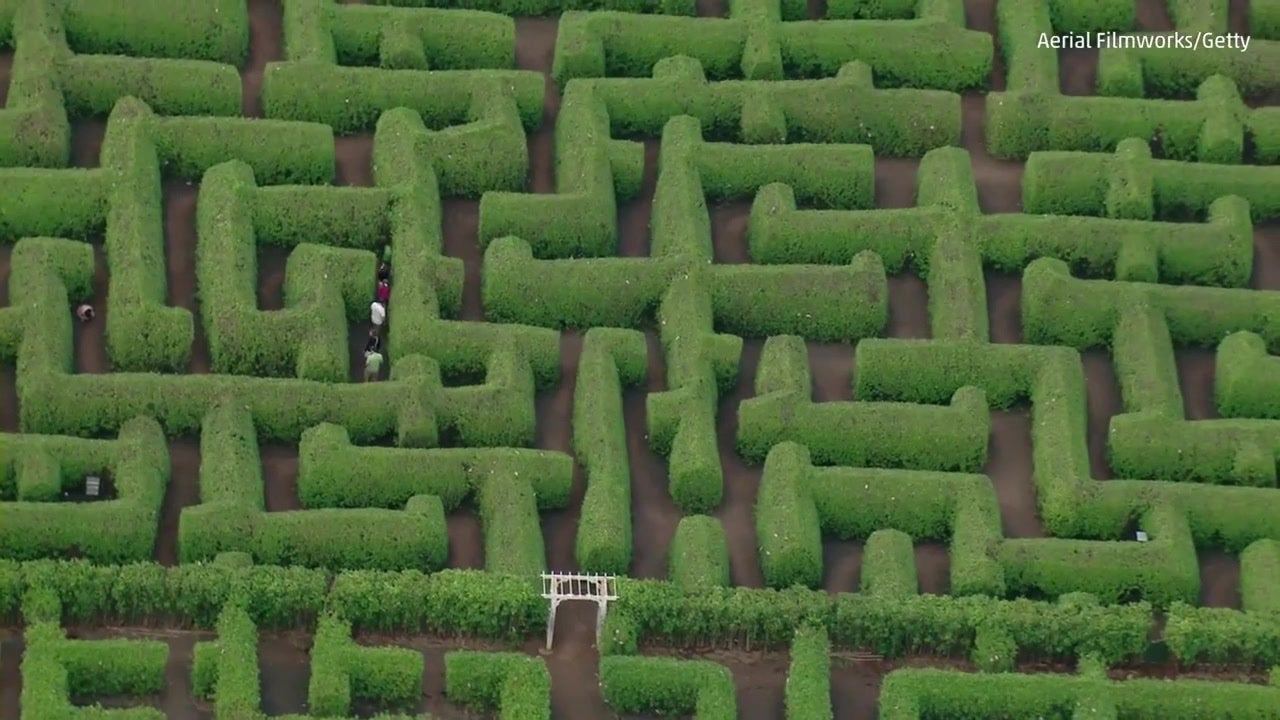 One of the World's Largest Garden Mazes in Hawaii