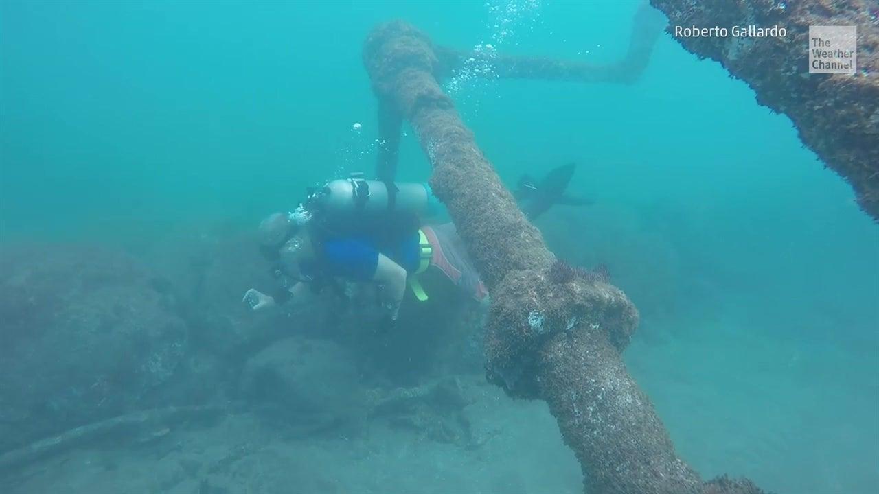 Un barco vive entre peces y coral