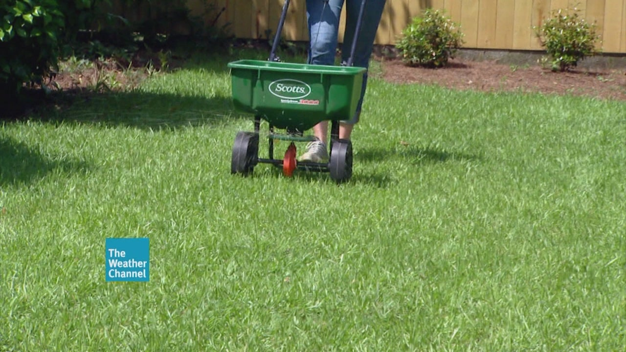 Fertilize Your Lawn for Fall