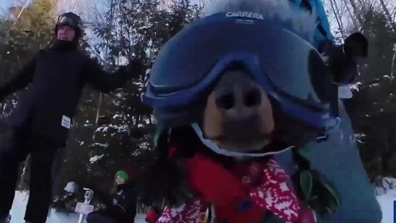 Crusoe The Skiing Sausage Dog!