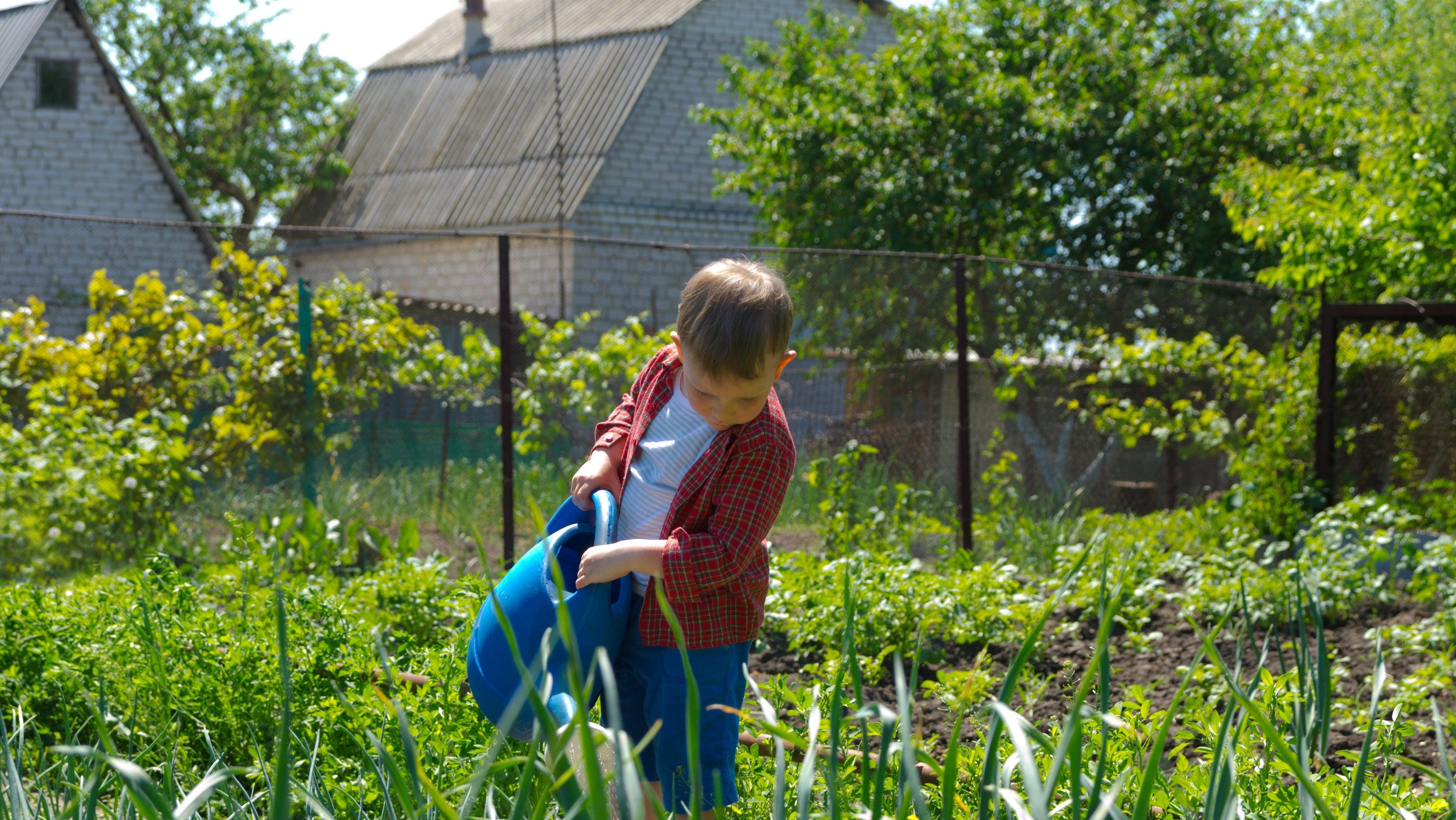 Bußgeld drohte: Welche Gartenarbeit Sie ab Montag erledigen dürfen