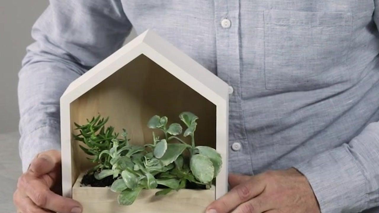 Hex Shadow Box Wall Planter