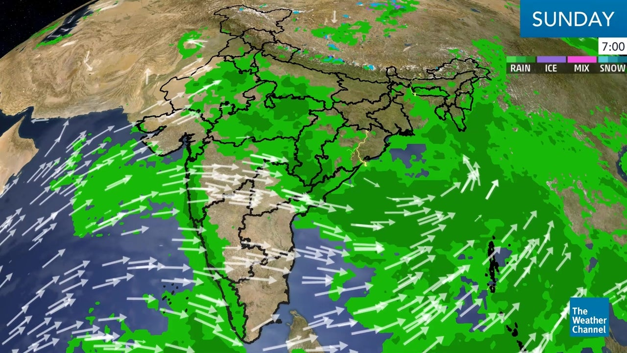 WATCH: Latest India Weather Forecast: August 19