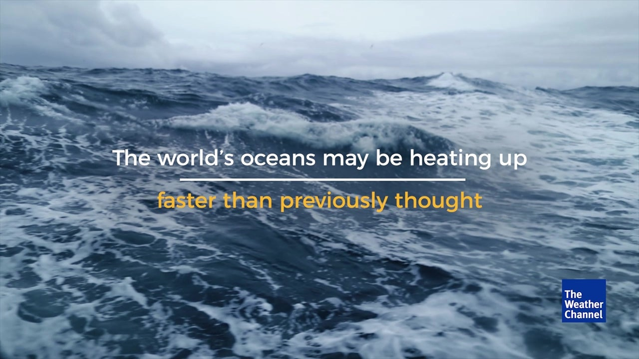 WATCH: Shocking footage reveals oceans heating up