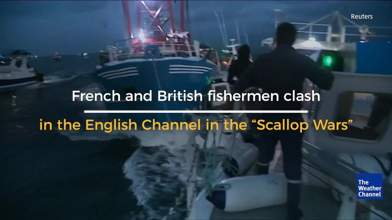 French and British fisherman clash over scallops in English Channel