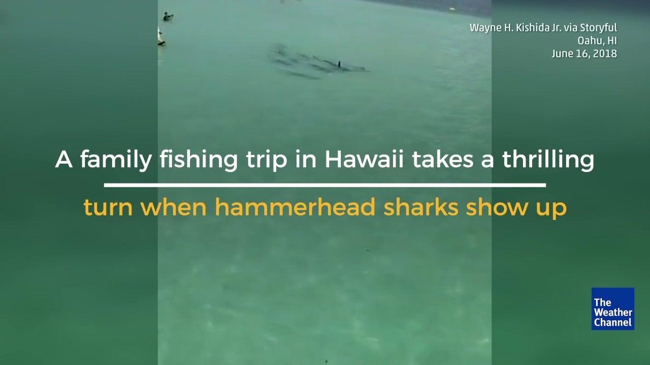 Fishing Trip Takes Dramatic Turn