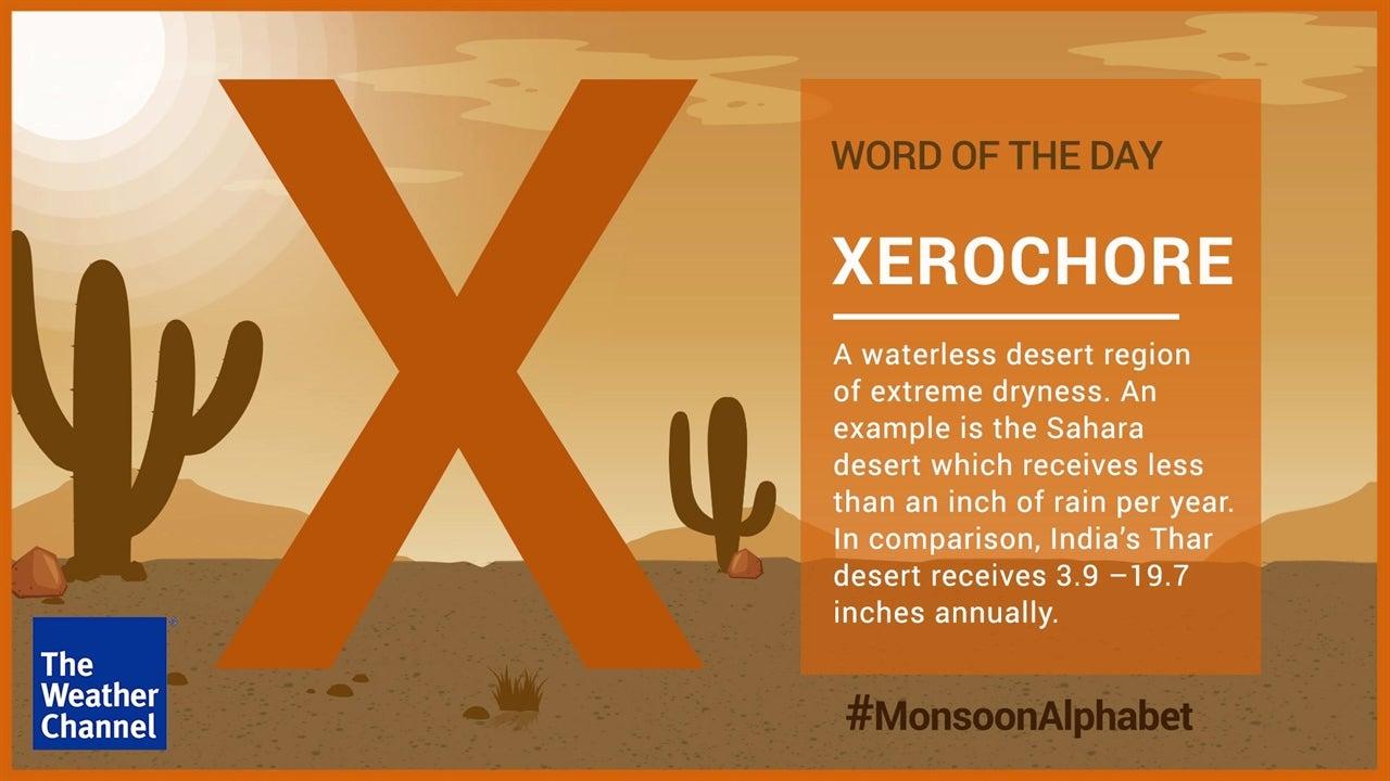 X for Xerochore #MonsoonAlphabet