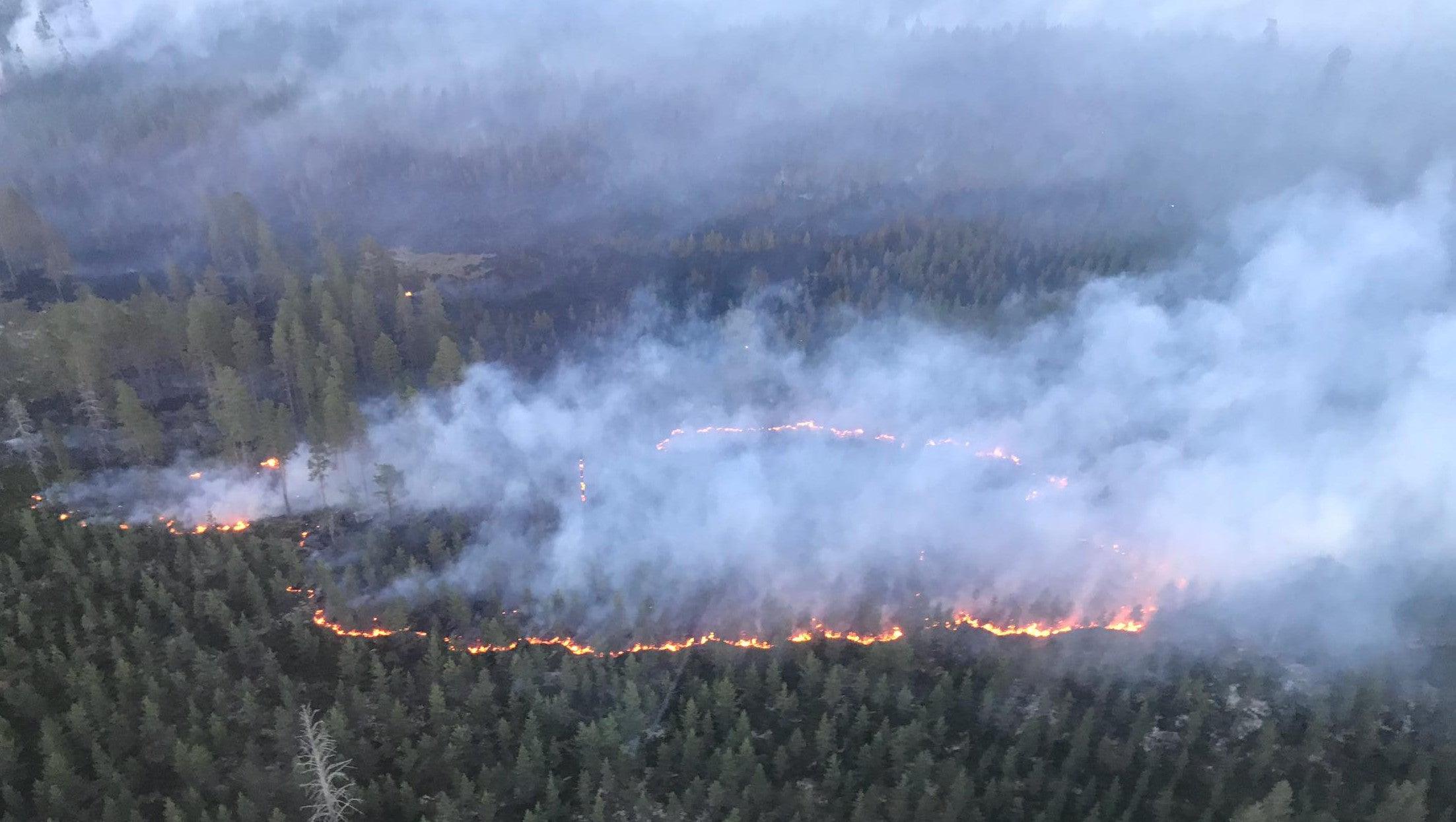 Schweden Waldbrände Karte.über Waldbrand In Schweden Rettungskräfte Werfen Bombe Ab The