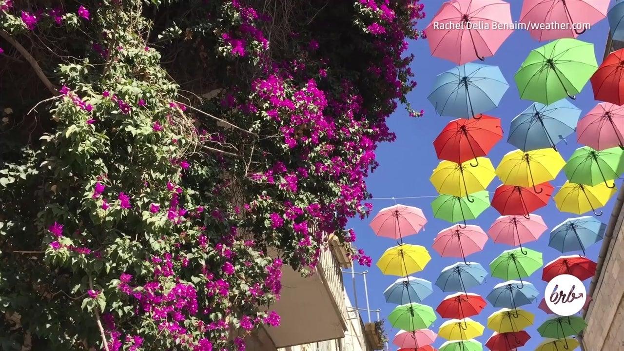 Les parapluies multicolores de Jérusalem