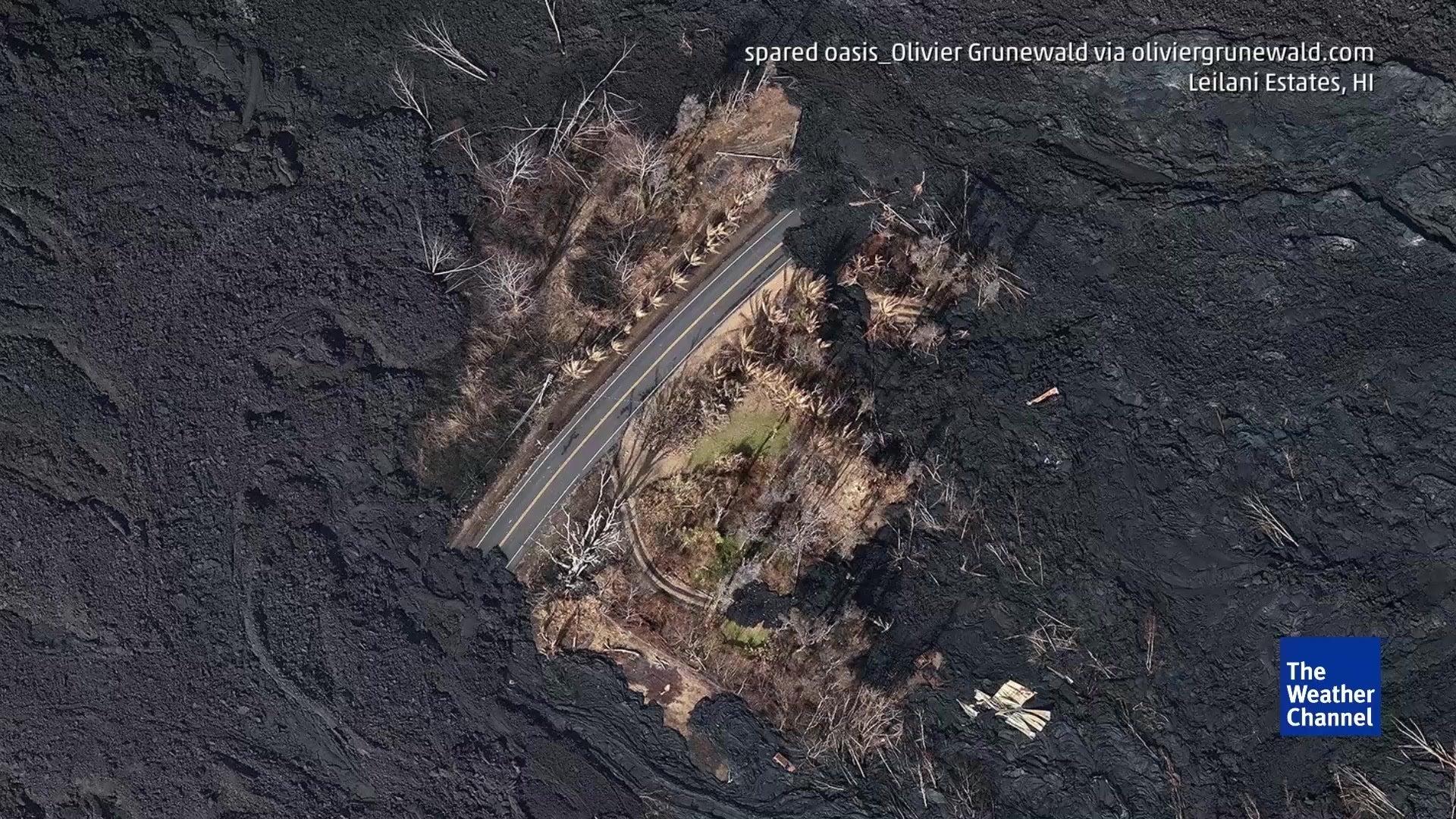 Faszinierende Bilder: Vegetationsinsel inmitten von Lavaströmen