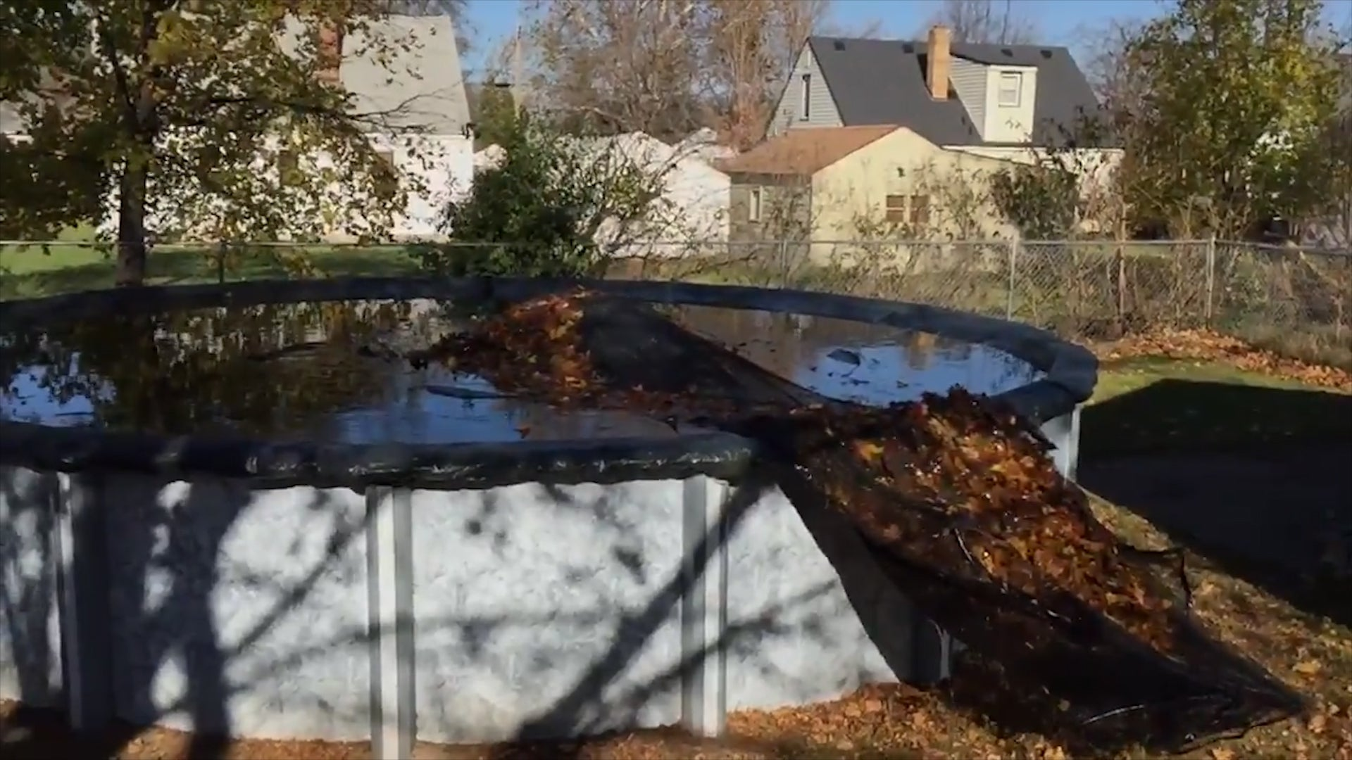 Life Hack to Remove Leaves from Pool