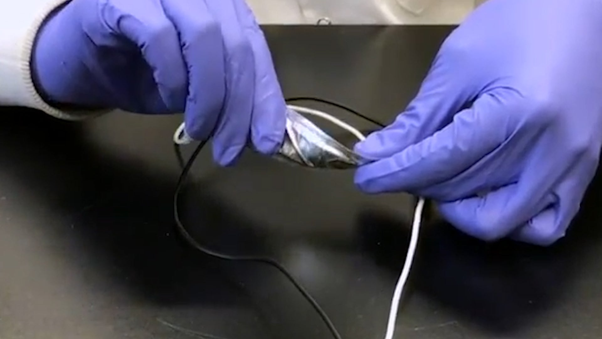 Engineers Develop Flexible Battery Technology | The ...