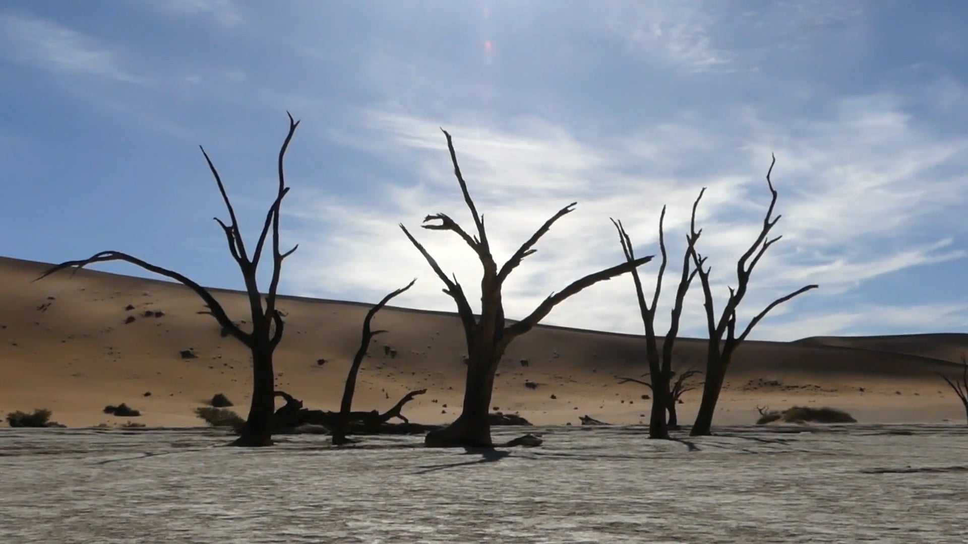 "Namibia's ""Dead Marsh"" Is Frozen In Time"