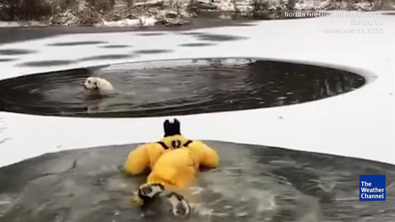 Un bombero con un traje especial se aventuró al rescate de un perro atrapado en un lago congelado