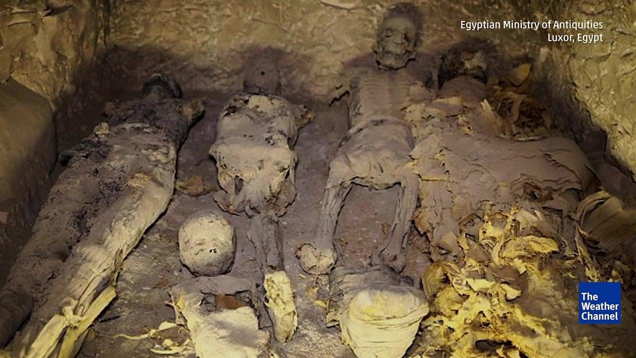 Momias muy bien conservadas son encontradas en Egipto