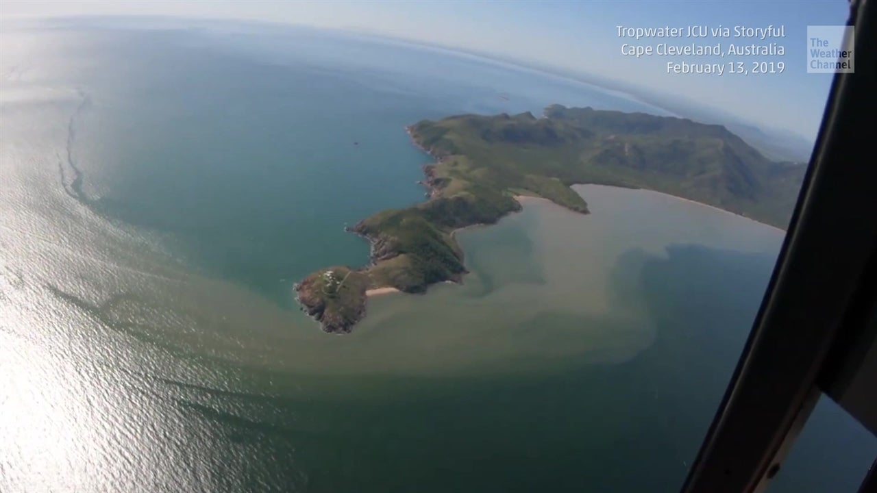 Gran Barrera de Coral bajo amenaza