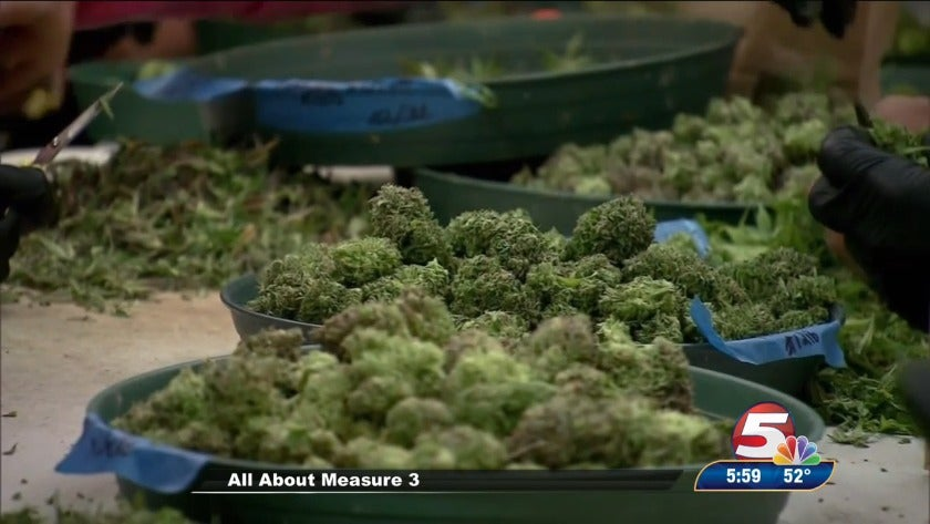 A closer look at Measure 3: Legalization of recreational marijuana