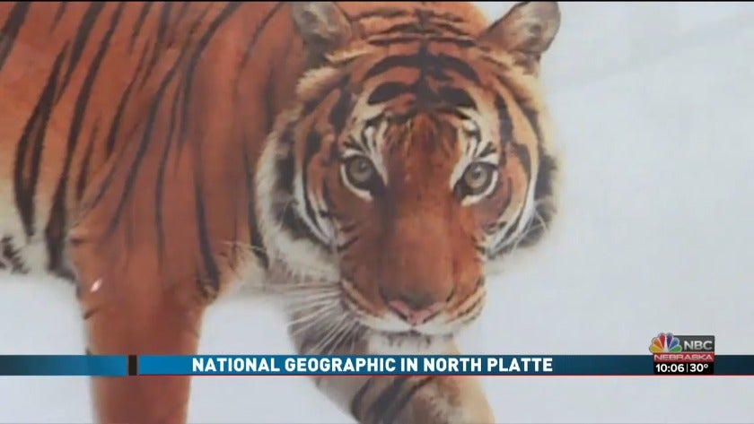 Nebraskan National Geographic photographer brings gallery to North Platte