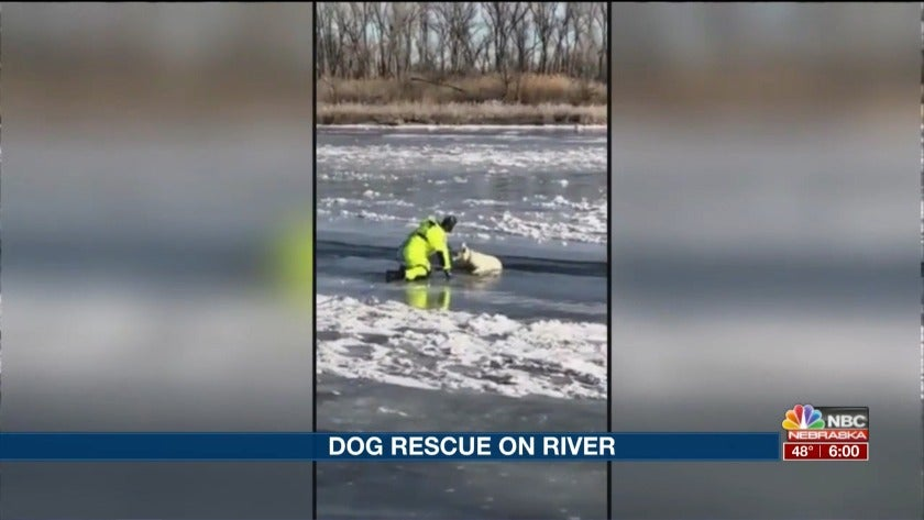 Dog rescue on the North Platte River