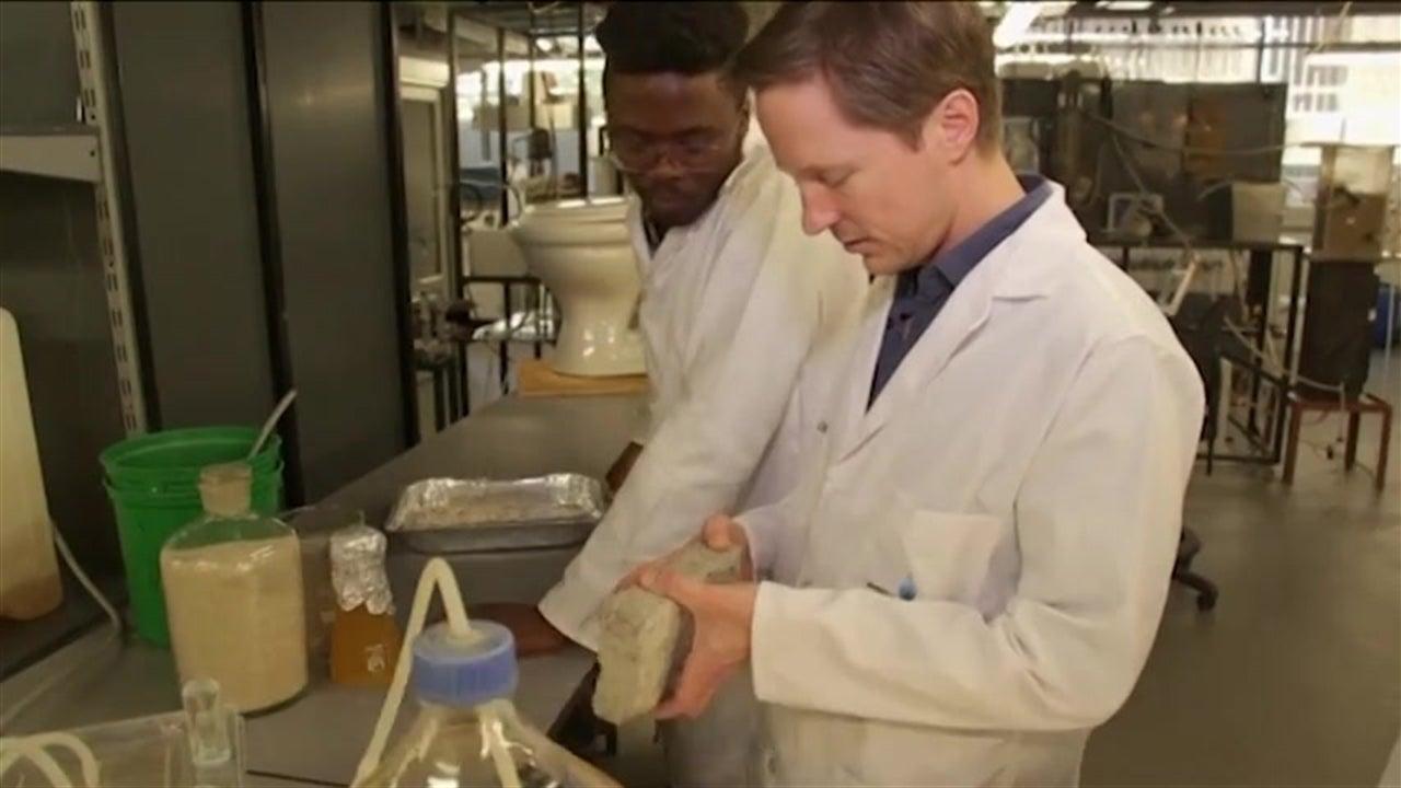 Tijolos feitos de urina humana