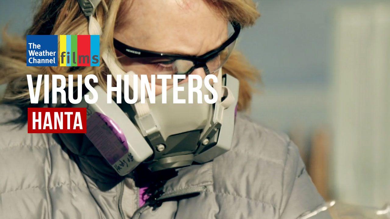 Virus Hunters: Hanta