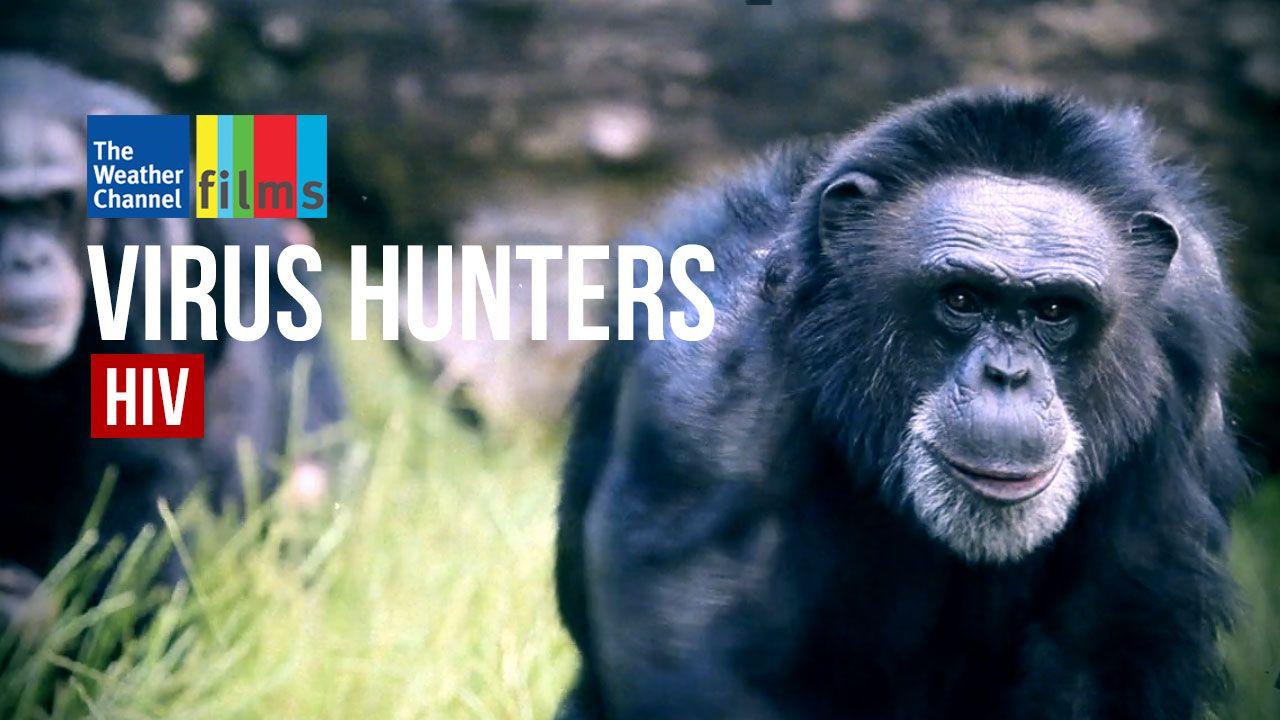 Virus Hunters: AIDS
